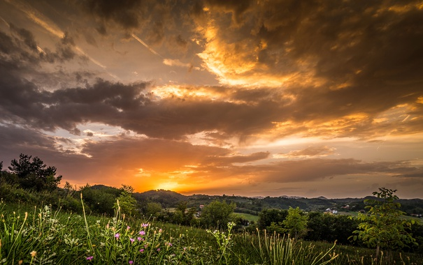 Фото обои небо, облака, закат, поля, луга, Хорватия