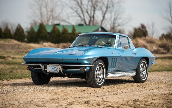 Фото обои Corvette, Chevrolet, шевроле, 1966, Stingray, корветт