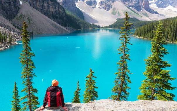 Фото обои лес, озеро, Canada, landscape, lake, Banff National park, Moraine