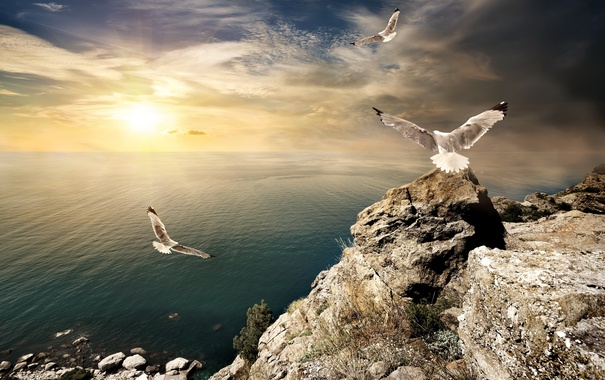 Фото обои море, небо, закат, камни, sky, sea, landscape