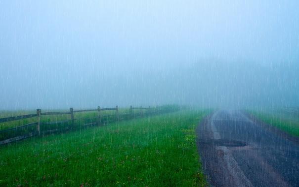 Фото обои дорога, дождь, забор