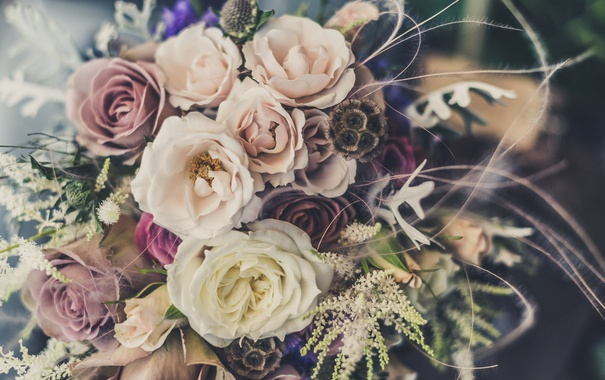 Фото обои цветы, розы, букет