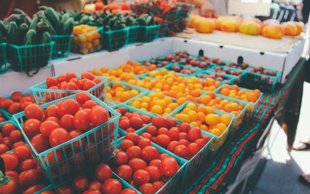 Фото обои желтые, красные, помидоры, много, томаты