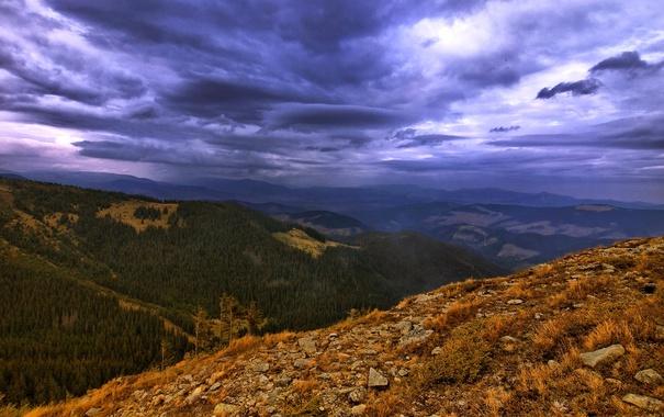 Фото обои лес, облака, деревья, горы, камни, вечер, сумерки