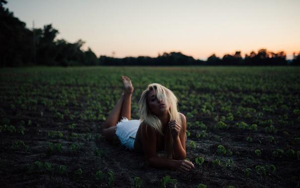 Фото обои девушка, закат, блондинка