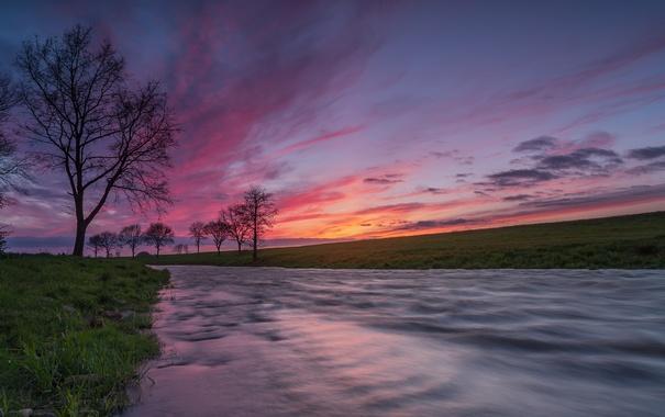 Фото обои закат, река, дерево