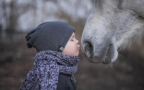 Фото обои настроение, конь, мальчик