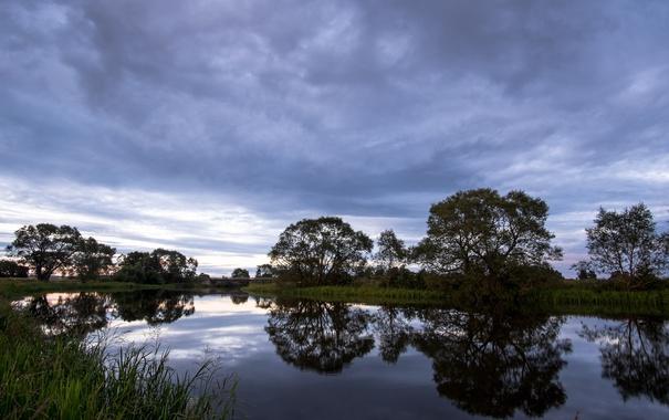 Фото обои небо, деревья, тучи, отражение, вечер, Швеция, sky