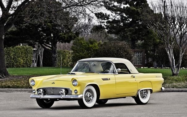 Фото обои Ford, форд, 1955, Thunderbird, тандерберт