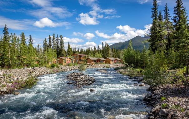 Фото обои лес, небо, облака, деревья, горы, ручей, камни