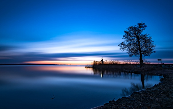 Фото обои озеро, дерево, рассвет, зарево