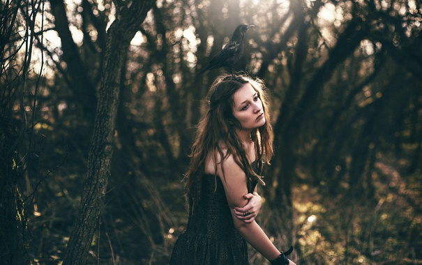 Фото обои Amy Spanos, ворона, девушка