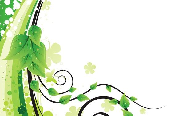 Фото обои листья, линии, узор, вектор