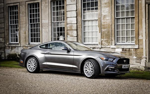 Фото обои Mustang, Ford, мустанг, форд