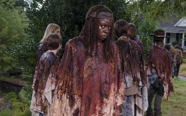 Фото обои группа, The Walking Dead, Ходячие мертвецы, Michonne, Danai Gurira