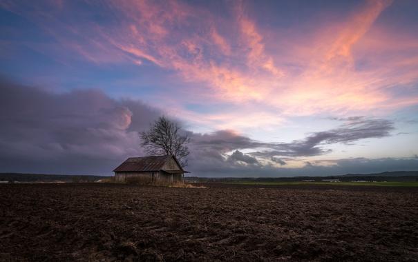 Фото обои поле, дом, пашня