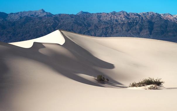 Фото обои песок, зелень, горы, барханы, скалы, пустныня