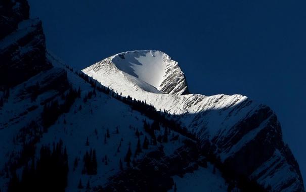 Фото обои снег, деревья, горы, тень, склон, вершина