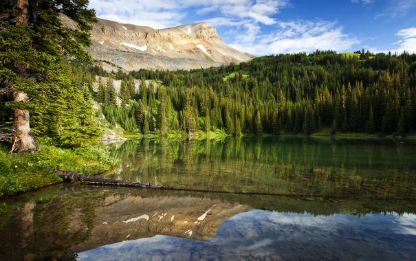Фото обои лес, горы, озеро, отражение, Канада