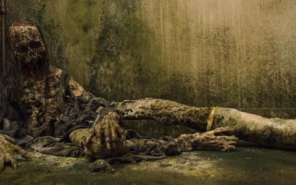 Фото обои фон, зомби, The Walking Dead, Ходячие мертвецы