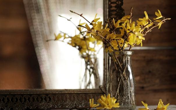 Фото обои ветки, отражение, зеркало, цветки, Форсайтия