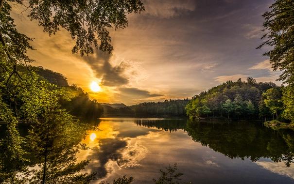 Фото обои небо, солнце, облака, лучи, деревья, ветки, озеро