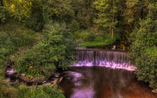 Фото обои деревья, парк, ручей, Англия, водопад, кусты, Yarrow valley park