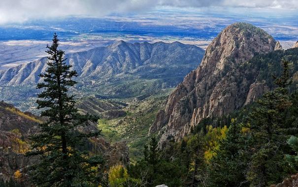 Фото обои деревья, горы, скалы, поля, долина, панорама, США