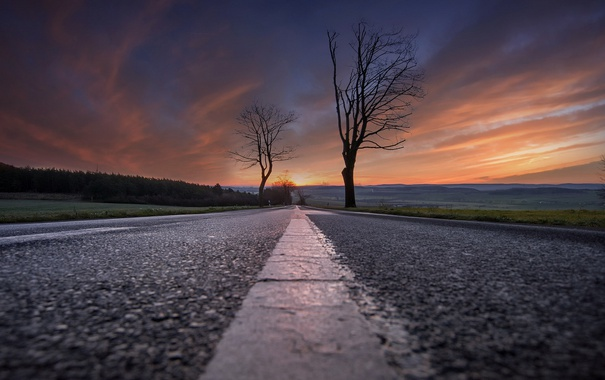 Фото обои дорога, деревья, закат