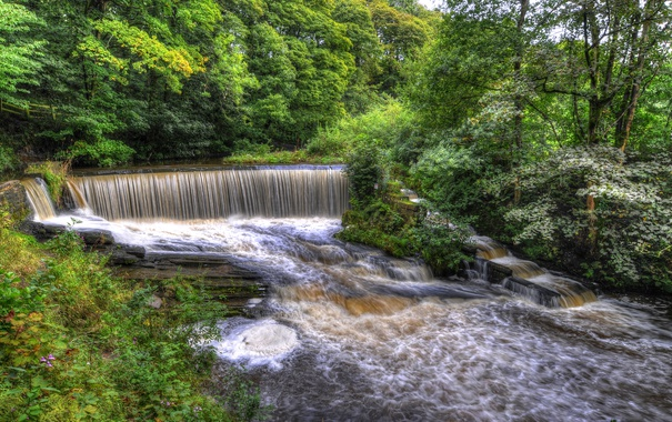 Фото обои деревья, парк, ручей, Англия, водопад, HDR, Yarrow valley park