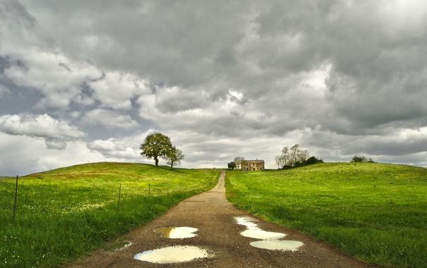 Фото обои дорога, поле, дом