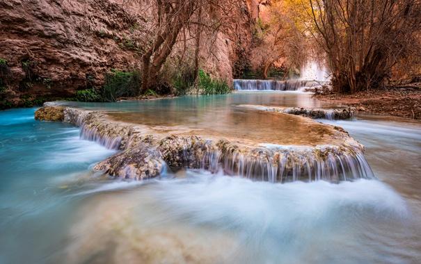 Фото обои деревья, ручей, скалы, водопад, каньон, США, каскад