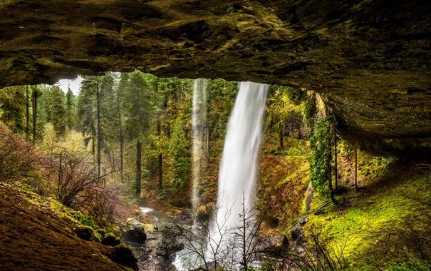 Фото обои лес, деревья, скала, ручей, камни, водопад, США