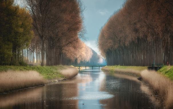 Фото обои природа, город, Damme Canal