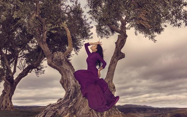 Фото обои природа, платье, девушка, деревья, поза