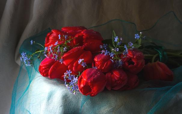 Фото обои букет, тюльпаны, незабудки