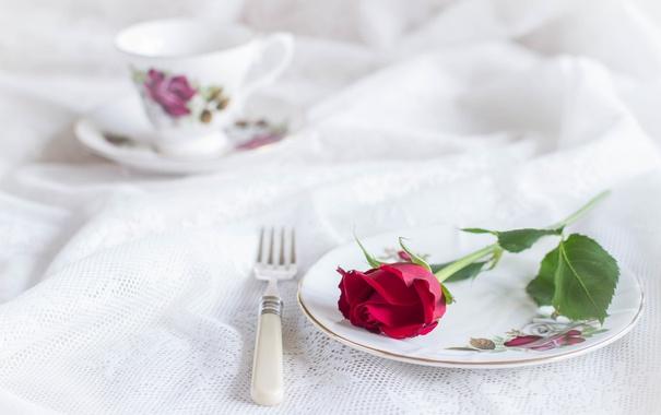 Фото обои стиль, роза, тарелка, чашка, вилка, скатерть
