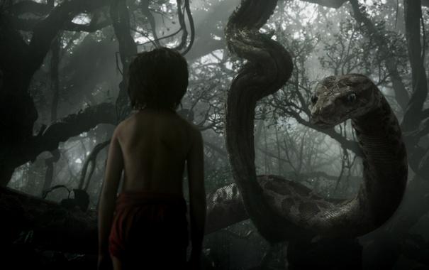 Фото обои мальчик, питон, Маугли, The Jungle Book, Книга джунглей, Каа