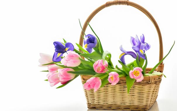 Фото обои корзина, тюльпаны, flowers, tulips, bouquet, basket