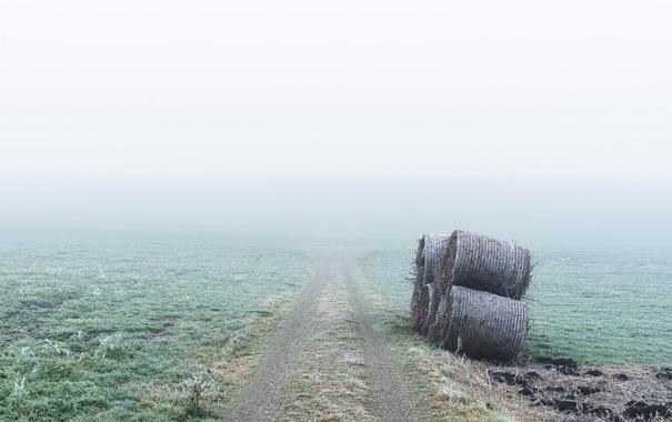 Фото обои дорога, туман, сено