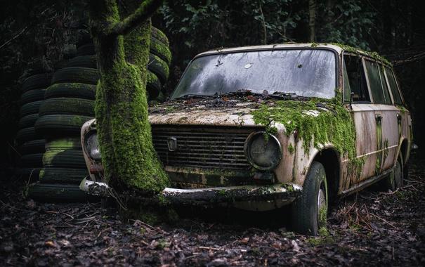 Фото обои машина, мох, лада