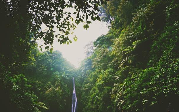 Фото обои зелень, холмы, водопад