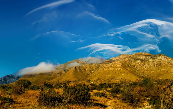 Фото обои облака, деревья, пейзаж, горы, США, Техас, Guadalupe Mountains National Park