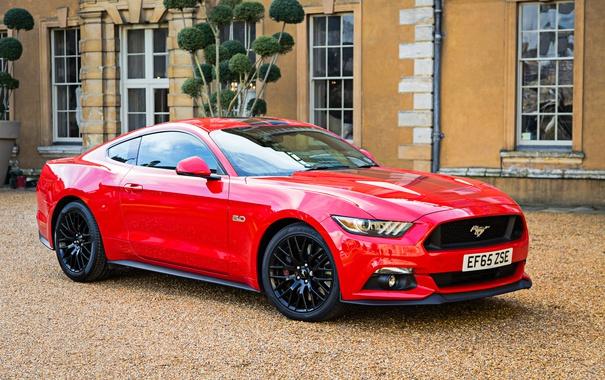 Фото обои Mustang, Ford, мустанг, форд, Convertible