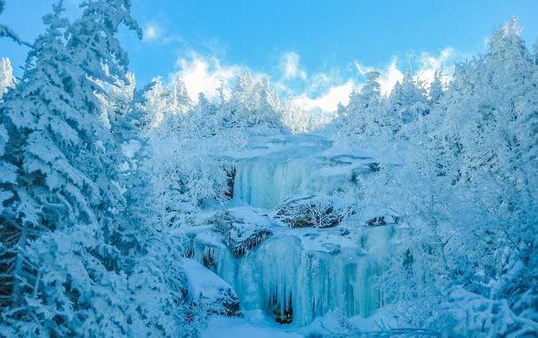 Фото обои лес, деревья, водопад, зима, лед, снег, небо