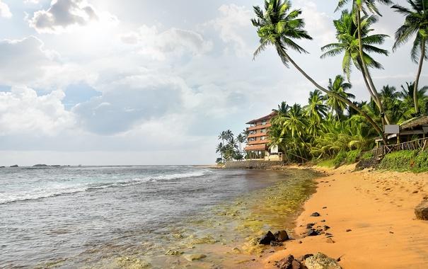 Фото обои песок, море, пляж, пальмы, берег, summer, beach