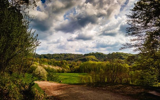 Фото обои дорога, лес, облака, деревья, Германия, Kaiserstuhl hills