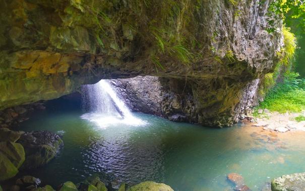 Фото обои скала, камни, водопад, мох, Австралия, Springbrook National Park