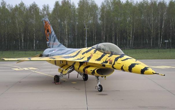 Фото обои истребитель, Fighting Falcon, многоцелевой, F-16A, Файтинг Фалкон