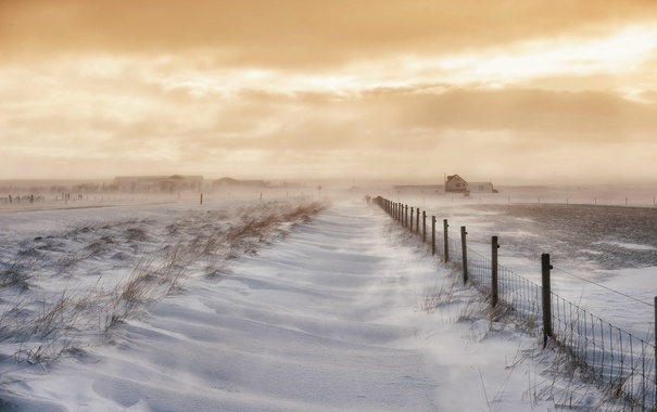 Фото обои поле, снег, Исландия